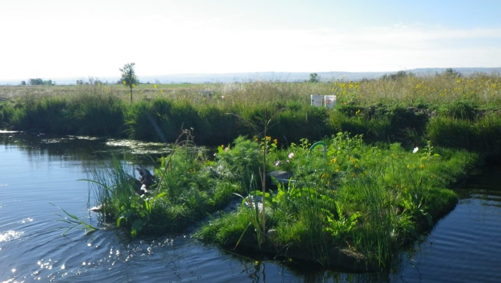a BioHaven floating streambed